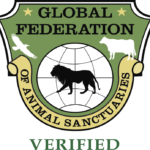Hidden Acres Rescue for Thoroughbreds Receives GFAS Certification