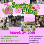 Save the Date for the Spring Fling 2018!